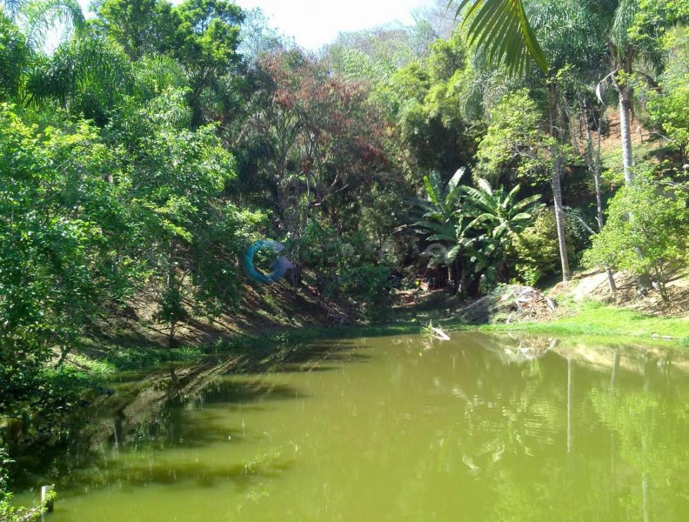 Comprar Rural / Sítio em São José dos Campos apenas R$ 550.000,00 - Foto 12