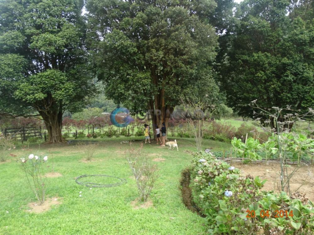 Comprar Rural / Sítio em São José dos Campos R$ 1.750.000,00 - Foto 5