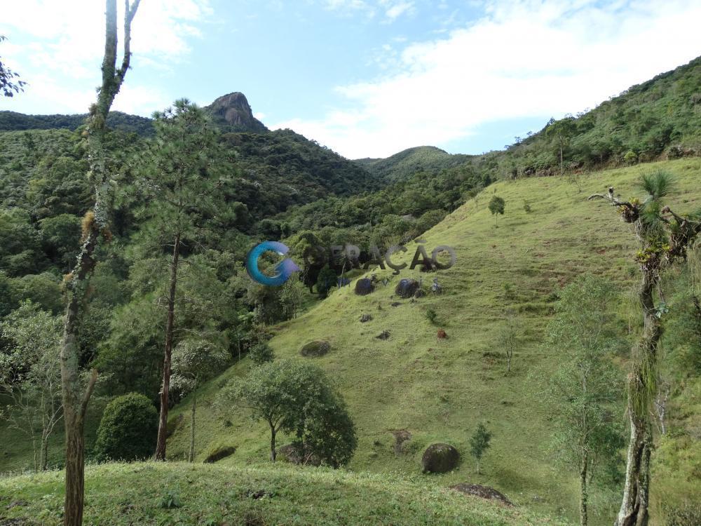 Comprar Rural / Sítio em São José dos Campos R$ 1.750.000,00 - Foto 12