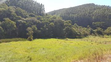 Paraibuna Laranjeiras Rural Venda R$3.100.000,00 5 Dormitorios 5 Vagas Area do terreno 1524600.00m2
