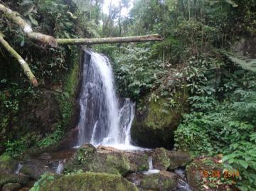 Rural / Sítio em São Francisco Xavier , Comprar por R$2.490.000,00