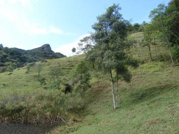 Rural / Sítio em São Francisco Xavier , Comprar por R$399.000,00