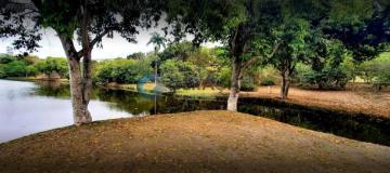 Comprar Terreno / Condomínio em São José dos Campos R$ 235.000,00 - Foto 29